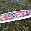 X Almond Surfboards - MWM Graphics
