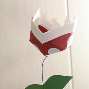 paperpiranhaplants-33c15d95b7f622bcf76209f77d916698